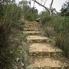 Out for a run - Mount Ainslie to Majura