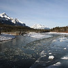 Ice flows in the Bow River