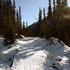 <b>7 Feb 2010</b> Skiing down the Goat Creek trail from Canmore towards Banff