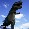 <b>11 Sept 2010</b> The World's Biggest Dinosaur, Drumheller