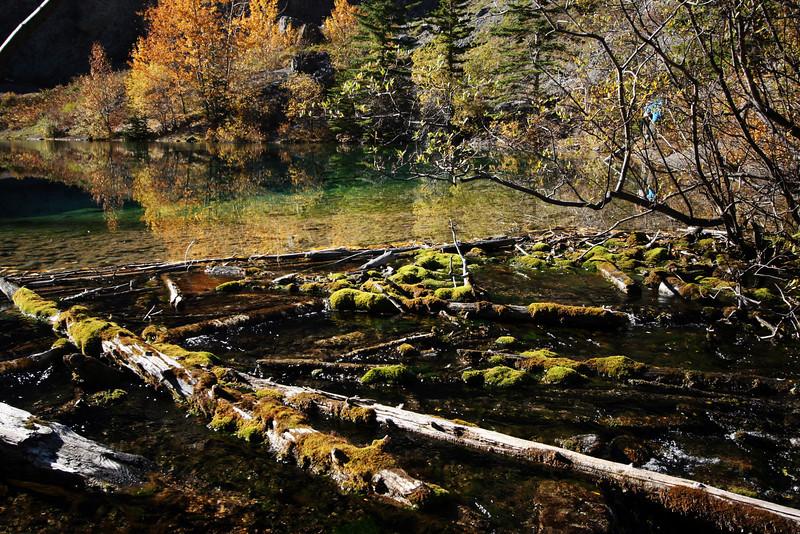 <b>1 Oct 2010</b> Grassi Lakes