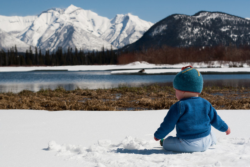 <b>8 April 2011</b> Finn at Vermillion Lakes
