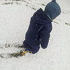 <b>2 October 2012</b> Out shuffling through the first snow