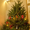 <b>Christmas Day 2011</b> Our Christmas tree!