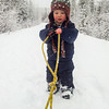<b>17 Feb 2013</b> Finn keeps dragging the sled