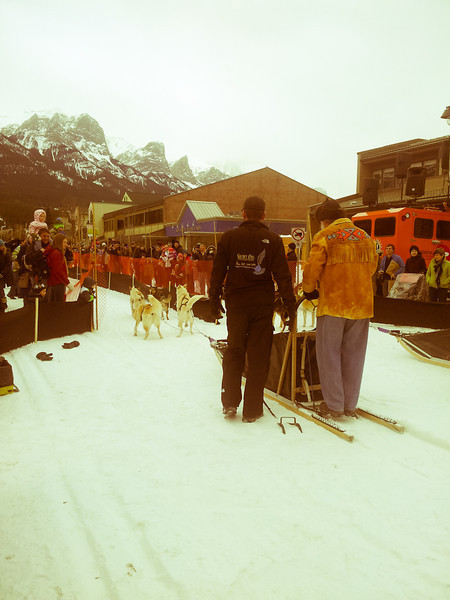 <b>9 Feb 2013</b> Sled dog racing down Main Street