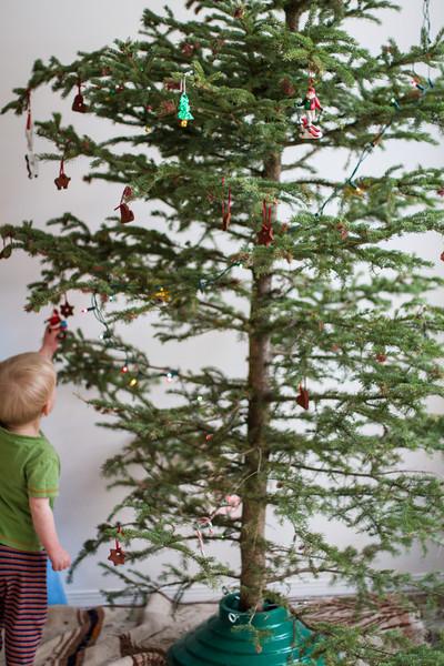<b>23 December 2012</b> Cycling Santa on the Christmas tree