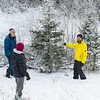 <b>8 December 2012</b> The Christmas tree expedition