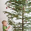 <b>23 December 2012</b> Cycling Santa on the Christmas tree