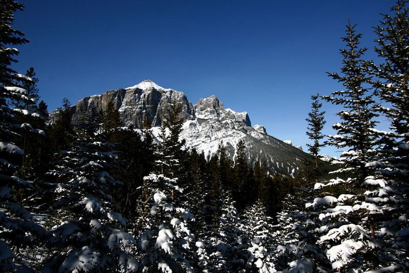 27 Feb 2009: East End of Rundle (EEOR) from the Highline Trail