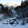 Wandering in Canmore - snowy creek