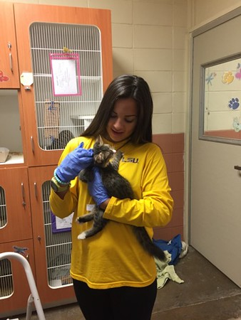 Day of Service 2016 - Bossier Animal Control