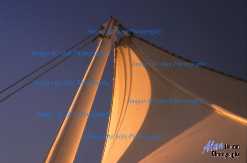 Sunshine on the Sails