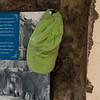 London Zoo 27-05-10 - 029