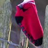 Weald Park 11-02-12  055