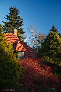 Biltmore House - gardens