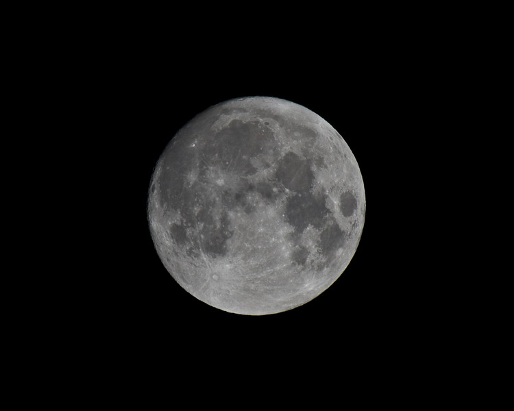 400mm, 1.4x teleconvertor. 896mm effective. cropped.