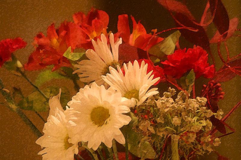 christmas-flowers