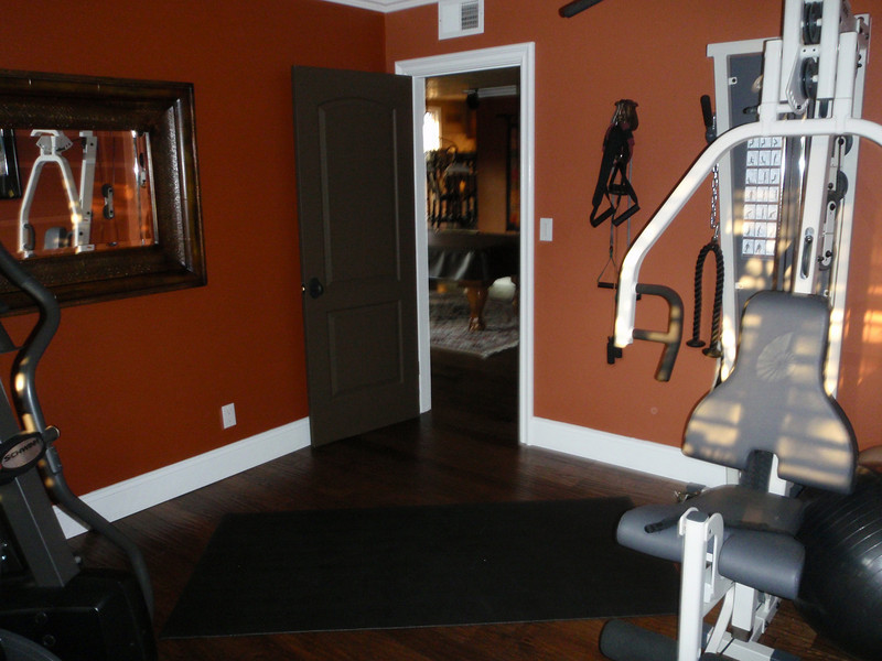 Gym (downstairs bedroom)
