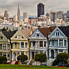 Painted Ladies-2