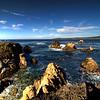 Point Lobos - Carmel, CA