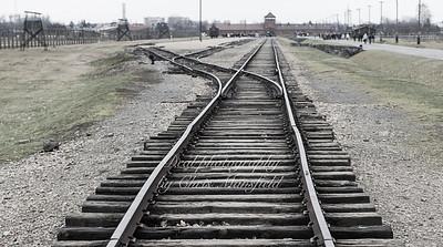 Birkenau rail tracks