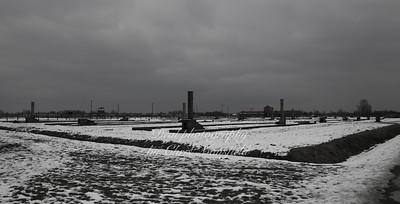 Birkenau landscape