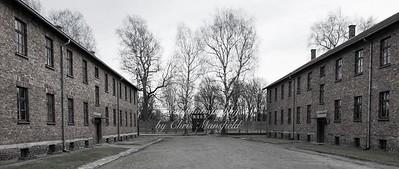 Auschwitz 14