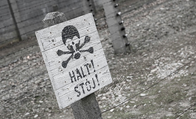 Auschwitz 18
