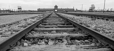 Birkenau 01