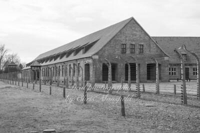 Auschwitz 08