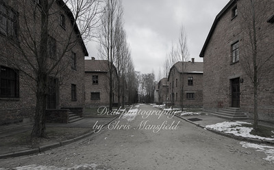 Auschwitz barrack blocks