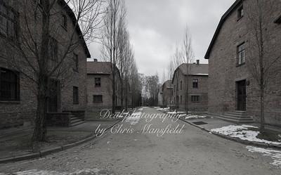 Auschwitz barrack blocks