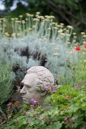 june 7th 2018 chelsea physic garden 11