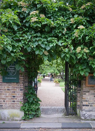 june 7th 2018 chelsea physic garden 16
