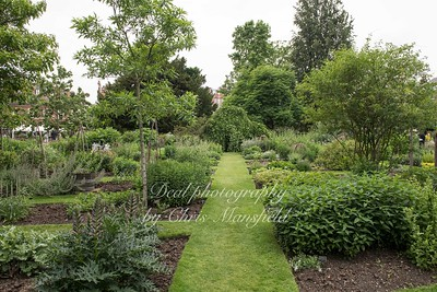 june 7th 2018 chelsea physic garden 08