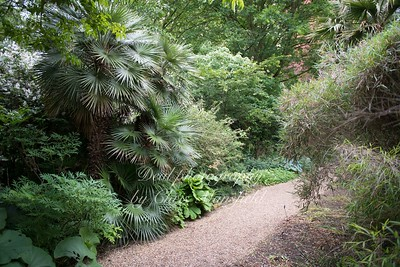 june 7th 2018 chelsea physic garden 05