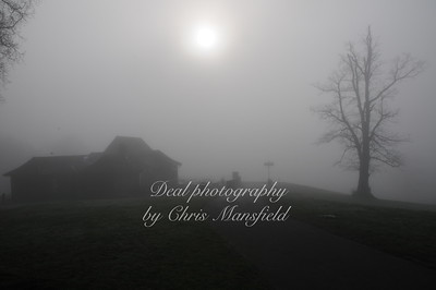 Oxleas wood cafe foggy sillhouette