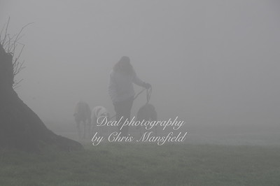 Oxleas wood fog