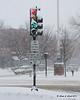 Traffic light on the common