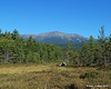 09.10.2014 <br><br>Today it was time to leave Baxter State Park and make the long drive home after a couple days of hiking.  I did have some time to drive around the park a bit more and find this view of Mt. Katahdin.  For being such a high peak (5,267 ft) there aren't many views of it