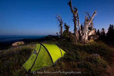 Near the summit of Snowbank Mountain in Idaho on an August evening.