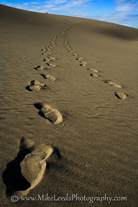 Footprints at the Bruneau Sand Dunes in Idaho.