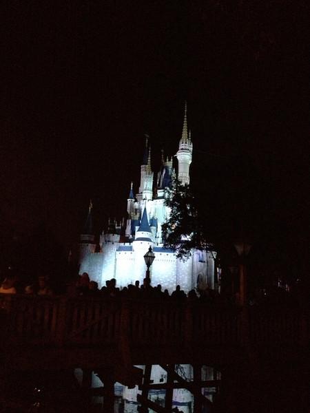 Disney 20141061