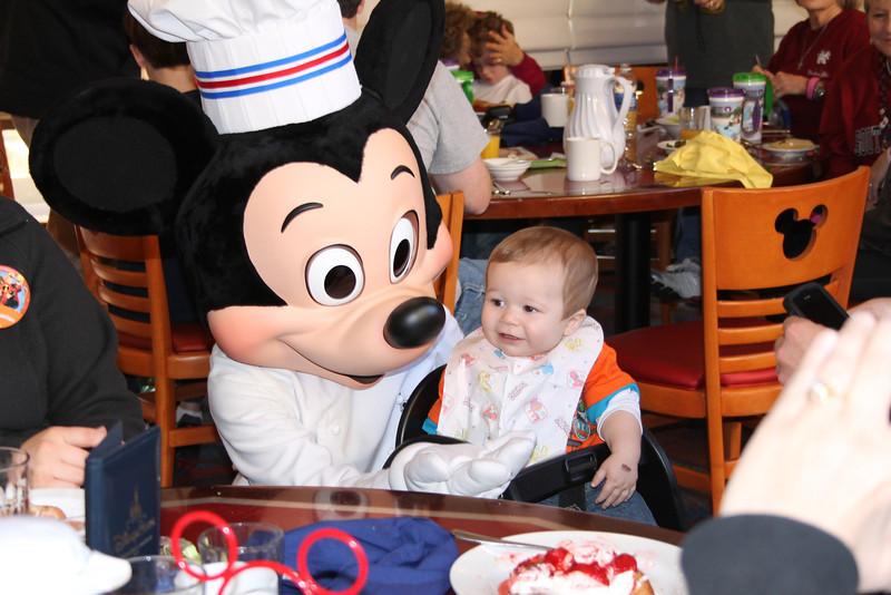 Disney 20141323