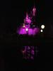 Disney 20141057