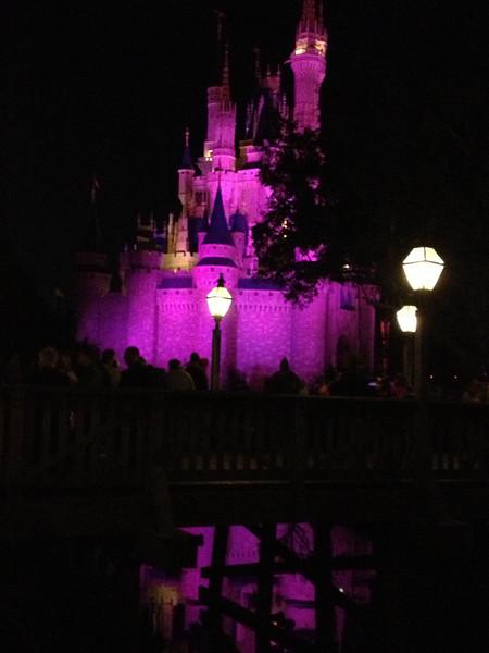 Disney 20141058