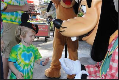 Disney 20141392