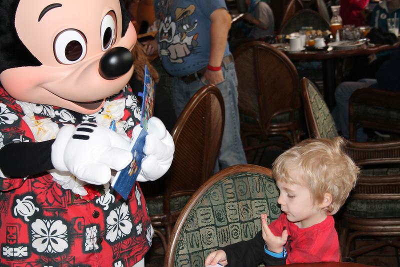 Disney 20141141