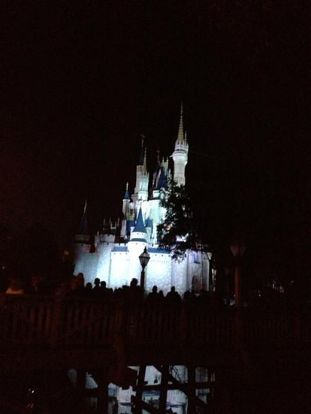Disney 20141060